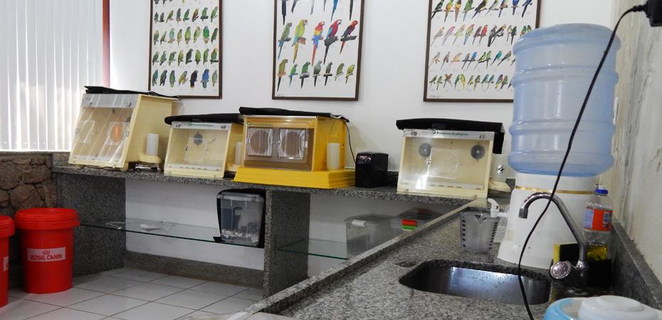 Sala com aparelhagens para cuidados de animais
