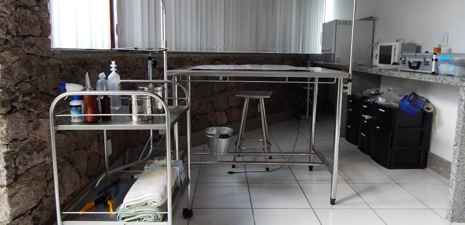 Estrutura de uma sala para cuidados animais
